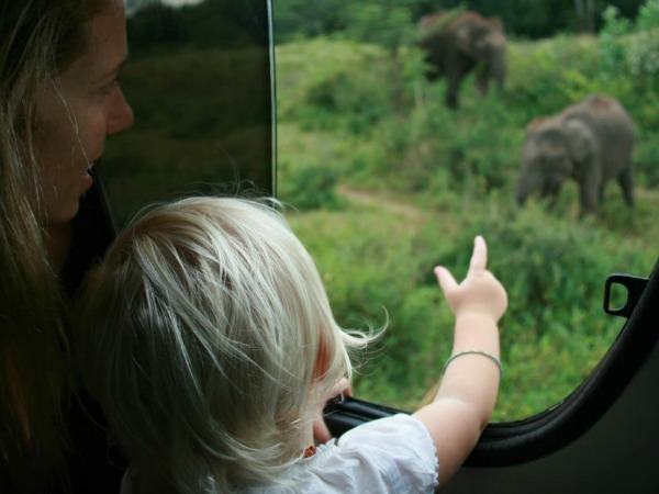 girl looking out of train at elephants in Sri Lanka