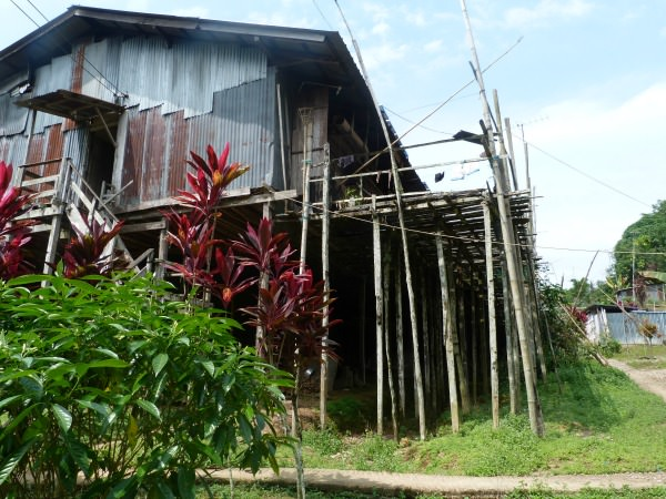borneo batang ai accommodation