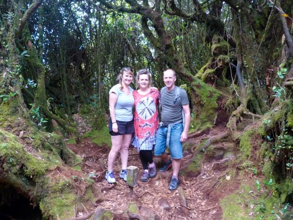 malaysia specialist chloe at the mossy forest