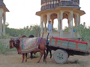 Ox Carts and a Majestic Fort