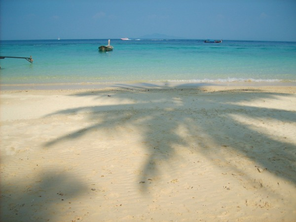 thailand-kophiphi-shadow-palmtree-sea-beach