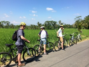 indonesia-bali-ubud-cycling-family-rice