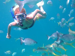 lid snorkelling under water with tropical fish around him