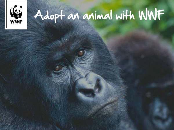 wwf-adopt-an-animal