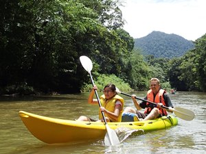 Rainforest Kayaking