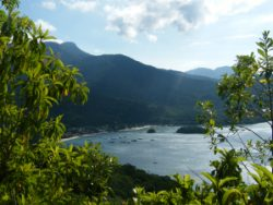 Escape to Ilha Grande
