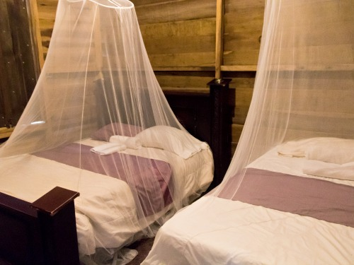 twin beds in sweet, simplistic bedroom in Juanilama accommodation