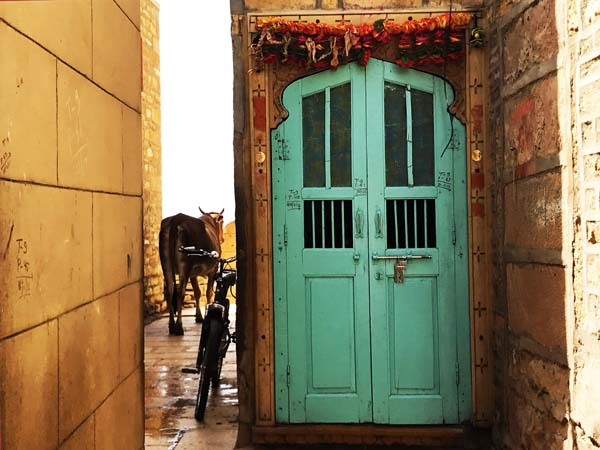 A narrow street with an ornate green door in India