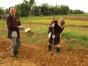 Down on the Farm in Hue