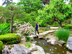 Man walking along a stone crossing over a river set amongst some peaceful gardens