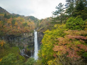 Majestic waterfall flowing down the rocks in amongst autumn coloured leaves and trees