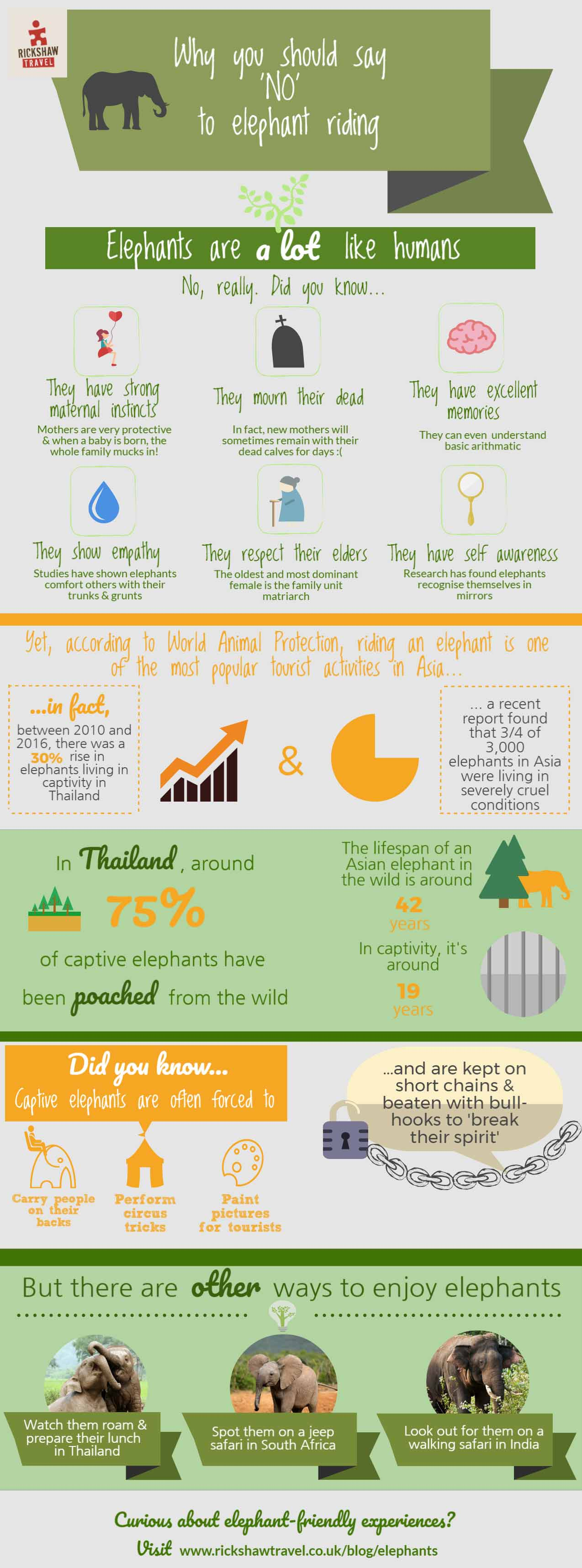 Why we said NO to elephant riding infographic