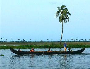 Four Indian men in a boat rowing on an exotic river with palm tree in background and blue sky