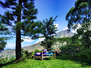 The view from a garden in Flores