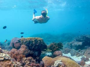 Underwater snorkelling in Indonesia