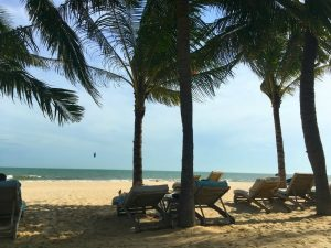 Beach loungers in Mia resort Mui Ne Vietnam