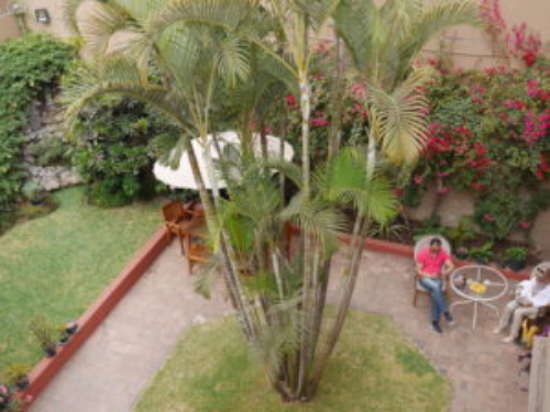 Man sitting on chair in garden San Antonio Peru