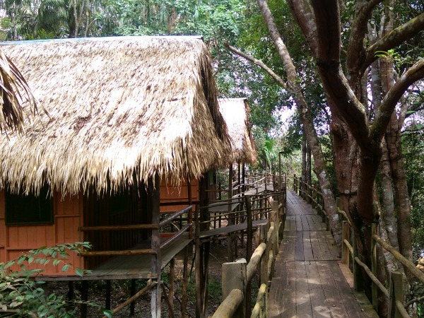 Tariri lodge in the Amazon in Brazil