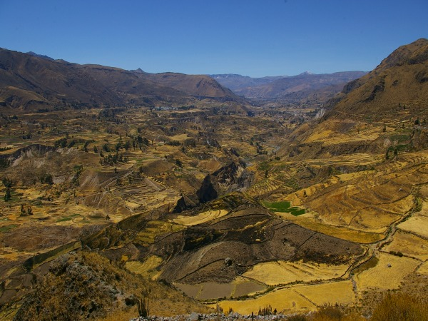 Colca Canyon landscape in Peru
