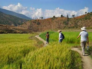 People on a trek through field in Bhutan