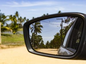 Palm trees reflected in mirror in brazil