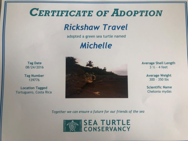 Certificate of turtle adoption
