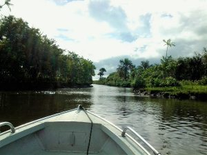 a boat trip along the Rio Preguicas in Brazil