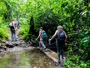 Costa Rica nature walk Corcovado