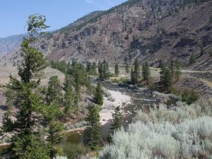 Lytton river and forest
