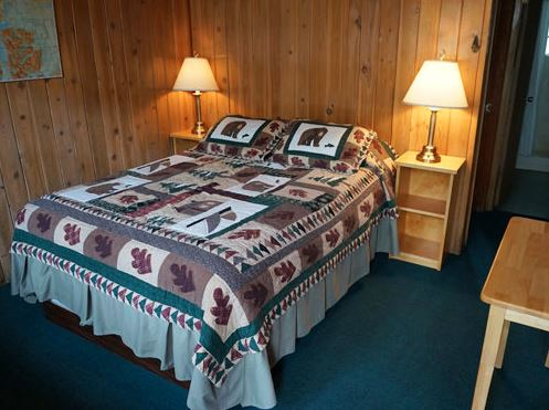 Inside the bedrooms of Motel with elephant print bedding