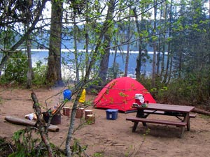 Camp set up in the woods