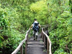 Esc-ape to Cat Tien National Park