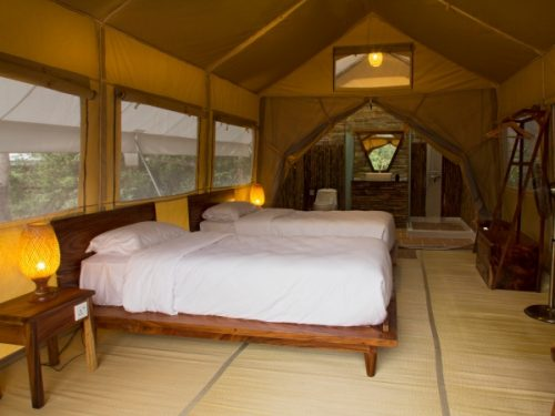 Twin beds inside tented camp