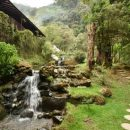River flowing along the side of our San Gerardo De Dota lodge