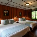 2 beds in a wooden pannelled room with a window looking out to the jungle of San Gerardo de dota