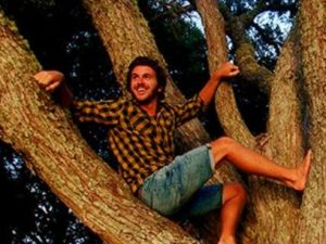 Miles sitting in a tree in the jungle of Sri Lanka