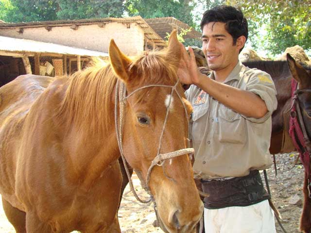 Horse with guide in Argentina