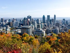 Montreal skyline of skyscrapers and autumn leaves