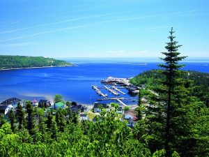 Bay of tadoussac, blue sea and green trees