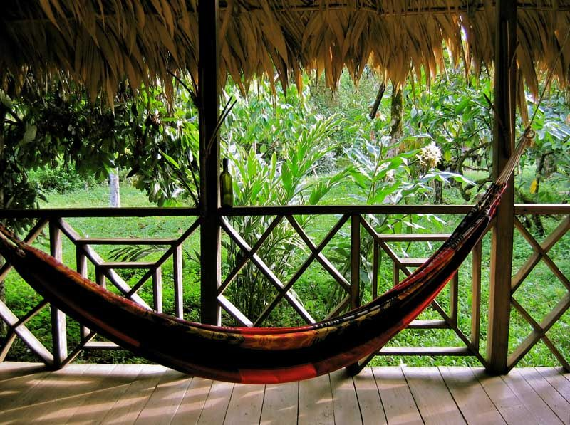 Hammock inside hut with jungle backdrop