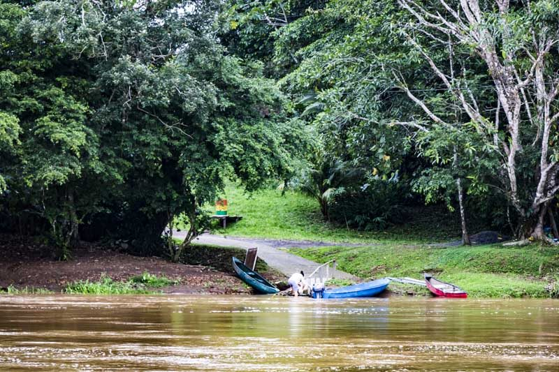 View from river of shore and canoes