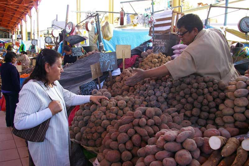 Woman buying food in local market