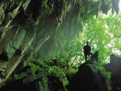 Explore Gunung Mulu Caves