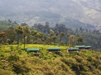 View of the eco-lodge and surrounding tea hills in Madulkelle, Sri Lanka