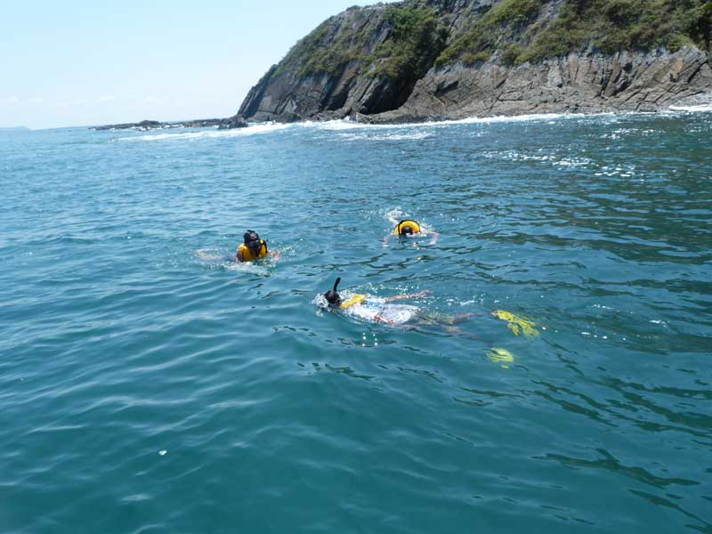 People snorkelling in the ocean