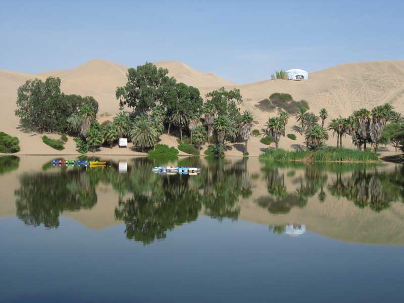Nazca Lake with trees