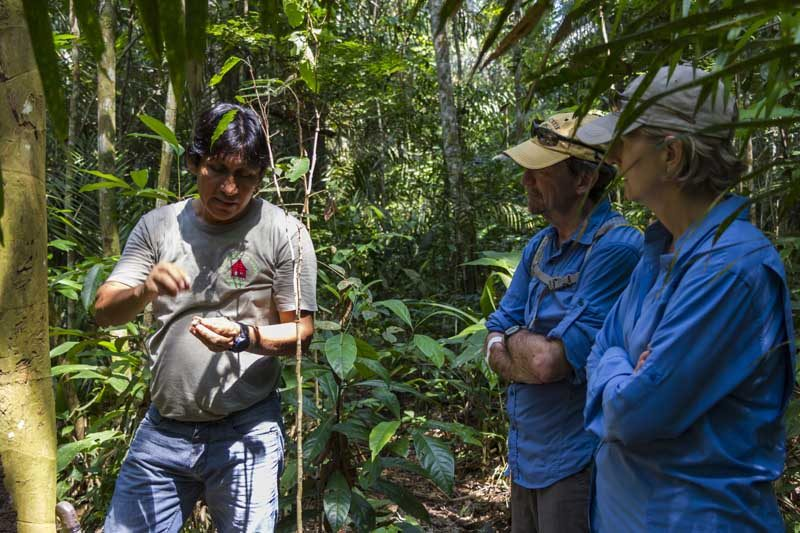 A local tour of the amazon rainforest