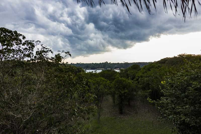 Landscape in the Amazon with a storm