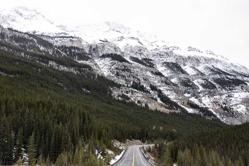 Snowy mountain with road and trees