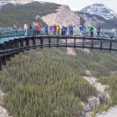 Skywalk bridge with people on it high above trees and canyon